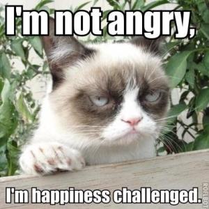 grumpy_cat_meme_2_by_jinxxnixx-d5m15cj