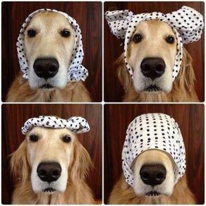 1 scarf 4 ways